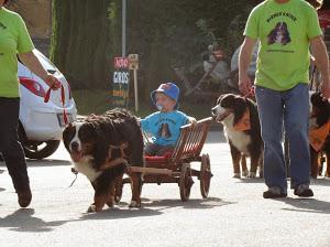 obiskali so nas tudi bernski planšarji z vozički, ki so jih bili še posebej veseli otroc