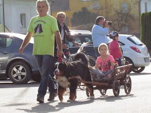 obiskali so nas tudi bernski planšarji z vozički, ki so jih bili še posebej veseli otroci