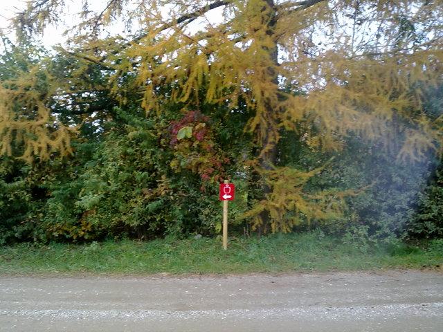 Jabolčna pot jeseni 010