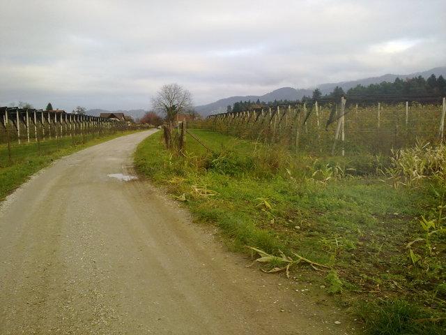 Jabolčna pot jeseni 011