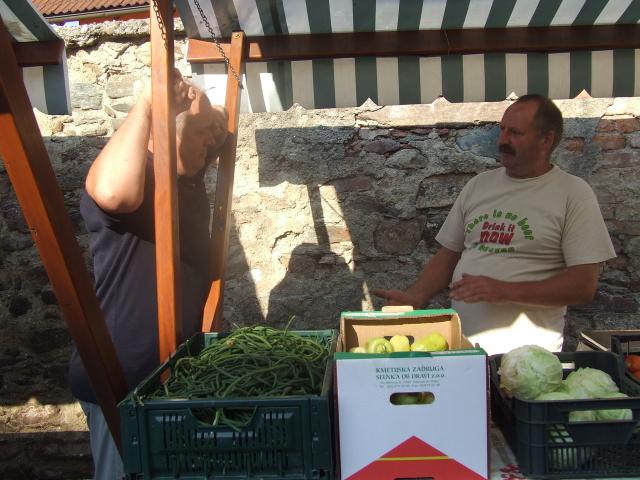 stročji fižol, zelje, paradižnik in še ...