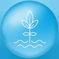water-nature