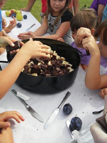 kuhanje marnelad avgust 2015 (4)
