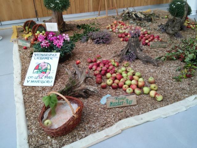 praznik jabolk in odprta dvorisca 2015 283