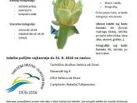 natecaj tulipanovec